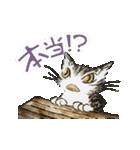 TVアニメ「猫のダヤン」(個別スタンプ:32)