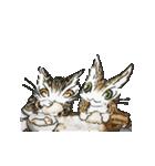 TVアニメ「猫のダヤン」(個別スタンプ:37)