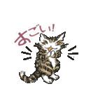 TVアニメ「猫のダヤン」(個別スタンプ:38)