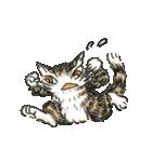 TVアニメ「猫のダヤン」(個別スタンプ:39)