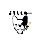 こっちゃん マル ver.(個別スタンプ:07)