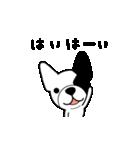 こっちゃん マル ver.(個別スタンプ:08)