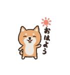 しばいぬさん 日常編 vol.1(個別スタンプ:01)