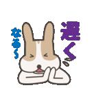 うちのこ~夫婦の会話編~(個別スタンプ:05)