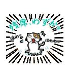 ホイきた☆芝居ネコ!(個別スタンプ:05)