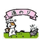 ホイきた☆芝居ネコ!(個別スタンプ:07)