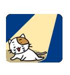 ホイきた☆芝居ネコ!(個別スタンプ:24)
