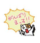 ホイきた☆芝居ネコ!(個別スタンプ:26)