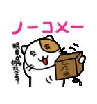 ホイきた☆芝居ネコ!(個別スタンプ:38)