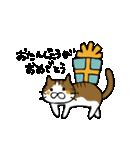 ネコのおめでとうスタンプ(個別スタンプ:19)