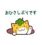 猫と四つ葉のクローバー 2(個別スタンプ:01)