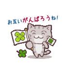 猫と四つ葉のクローバー 2(個別スタンプ:06)