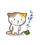 猫と四つ葉のクローバー 2(個別スタンプ:07)