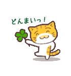 猫と四つ葉のクローバー 2(個別スタンプ:08)