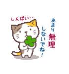 猫と四つ葉のクローバー 2(個別スタンプ:11)