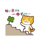 猫と四つ葉のクローバー 2(個別スタンプ:14)