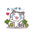 猫と四つ葉のクローバー 2(個別スタンプ:22)