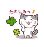 猫と四つ葉のクローバー 2(個別スタンプ:24)