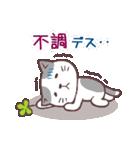 猫と四つ葉のクローバー 2(個別スタンプ:25)