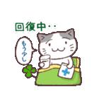 猫と四つ葉のクローバー 2(個別スタンプ:26)