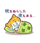 猫と四つ葉のクローバー 2(個別スタンプ:37)