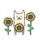 海パンにゃん ~夏~(個別スタンプ:19)