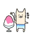 海パンにゃん ~夏~(個別スタンプ:26)