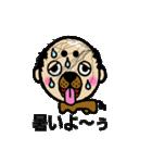 犬人間むろい(個別スタンプ:8)
