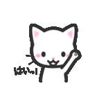 福猫ちゃん☆シンプル2段階(個別スタンプ:12)