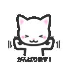 福猫ちゃん☆シンプル2段階(個別スタンプ:15)