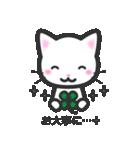 福猫ちゃん☆シンプル2段階(個別スタンプ:24)