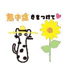 夏の大人かわいいシュールな黒ネコ★(個別スタンプ:36)