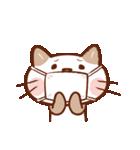 手描き風!ネコねこ日常スタンプ(個別スタンプ:19)