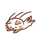 手描き風!ネコねこ日常スタンプ(個別スタンプ:27)