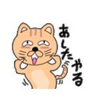 ゆるい感じでうざいむかつく猫です(個別スタンプ:35)