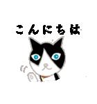 飼いネコさん(個別スタンプ:1)