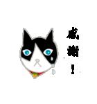 飼いネコさん(個別スタンプ:18)