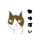飼いネコさん(個別スタンプ:22)