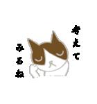 飼いネコさん(個別スタンプ:26)