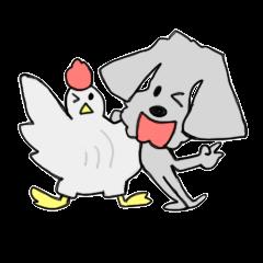 いぬと烏骨鶏とゆかいな仲間たち