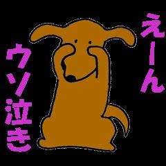 犬の日常生活