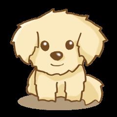 ゴールデンレトリバーさんの犬スタンプ