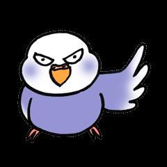 """""""セキセイインコの日常2"""" 鳥さんと一緒05"""