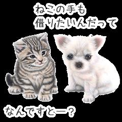 子犬と子猫の絵
