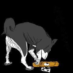 黒柴犬くぅ