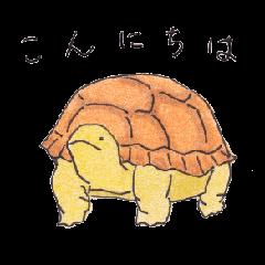 cho-ju
