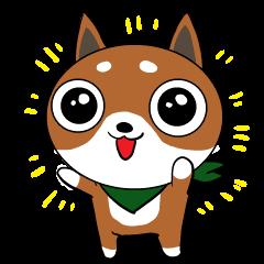 スカーフ犬 コリキ