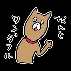 のんびり犬のジョン