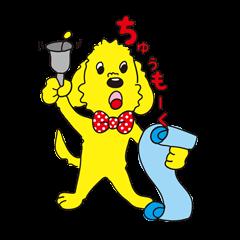 Happy Dooの第2弾! 元気なDoo(犬)