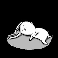 ウサギとたぬき。
